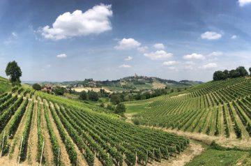 Fernwanderung Piemont von Weingut zu Weingut 011a