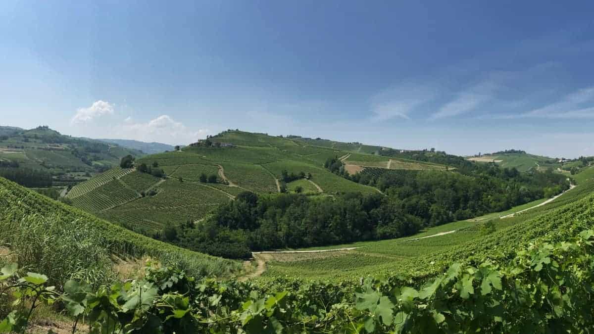 Fernwanderung Piemont von Weingut zu Weingut Etappe 3 13