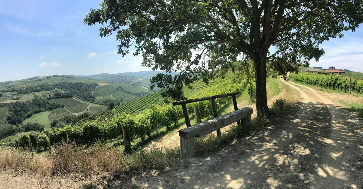 Fernwanderung Piemont von Weingut zu Weingut Etappe 3 16