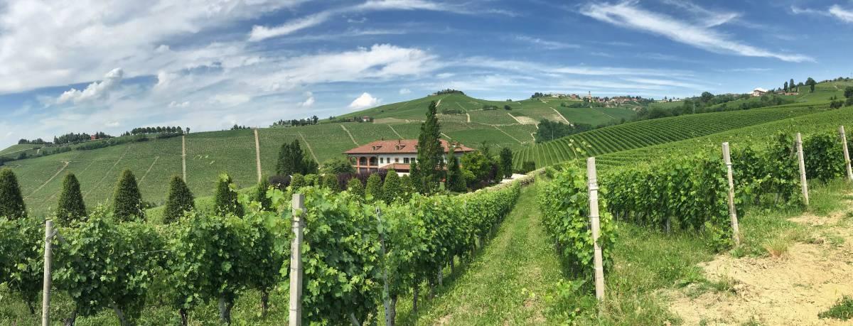 Fernwanderung Piemont von Weingut zu Weingut Etappe 3 23