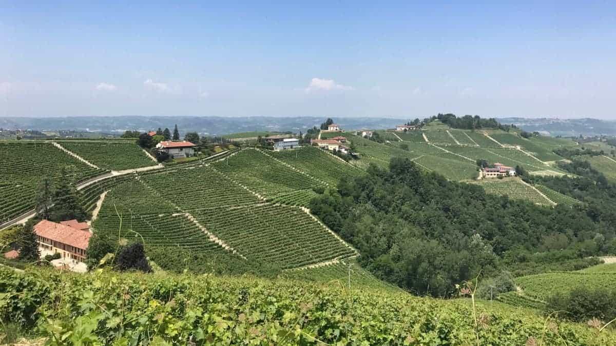 Fernwanderung Piemont von Weingut zu Weingut Etappe 4 12
