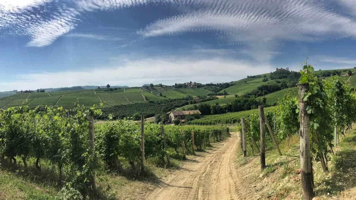 Fernwanderung Piemont von Weingut zu Weingut Etappe 5 23