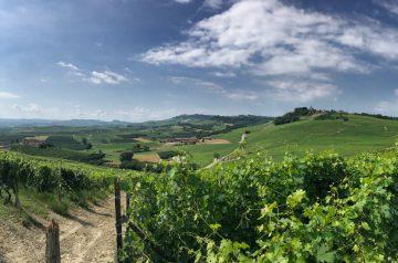 Fernwanderung Piemont von Weingut zu Weingut Etappe 6 08