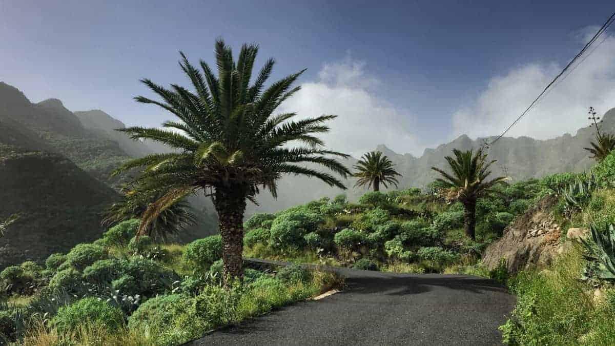 GR132 Rundwanderung La Gomera 1
