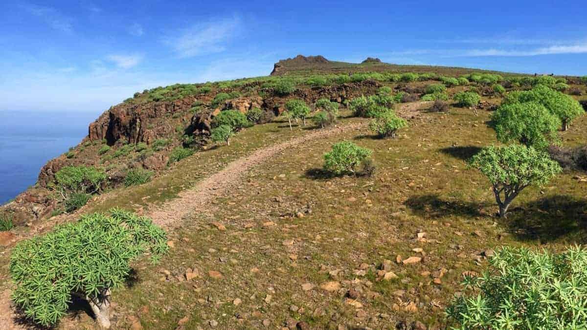 GR132 Rundwanderung La Gomera 6