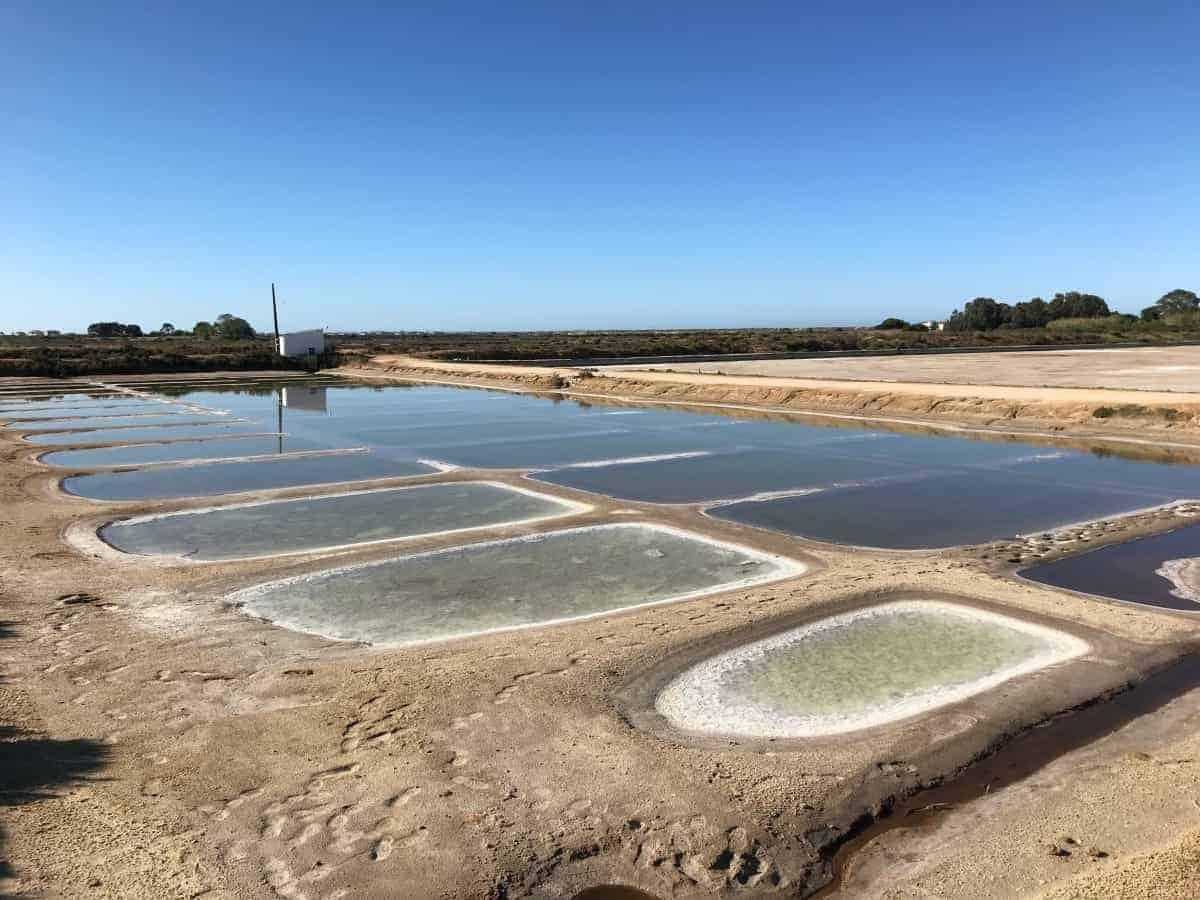 Küstenwanderung Algarve Etappe 1 03 Salzgewinnung in einer der Salinas im Parque Natural Ria Formosa