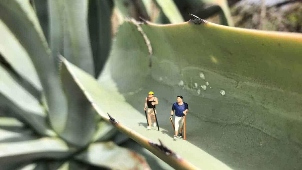 Küstenwanderung Algarve Fragen und Erfahrungsberichte