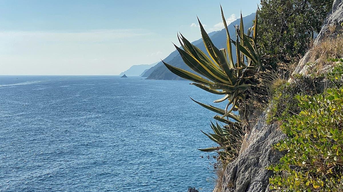 Ligurische Küste Cinque Terre Fernwanderung Etappe 6 27